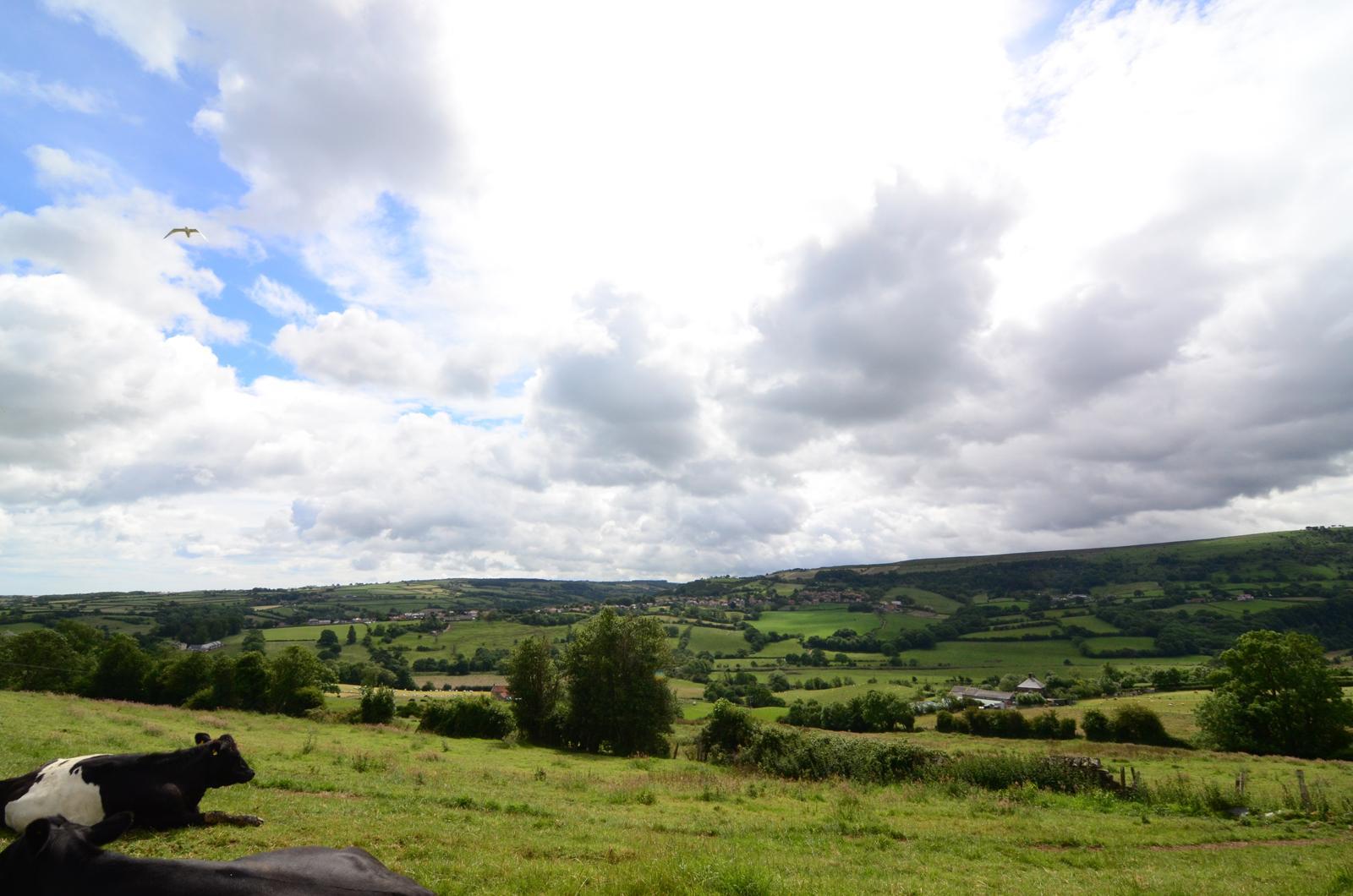 Esk Valley near Whitby